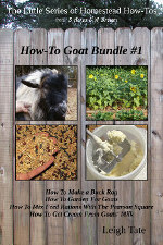 The Little Series of Homestead How-Tos Goat Bundle #1